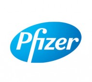 Partition Work at Pfizer